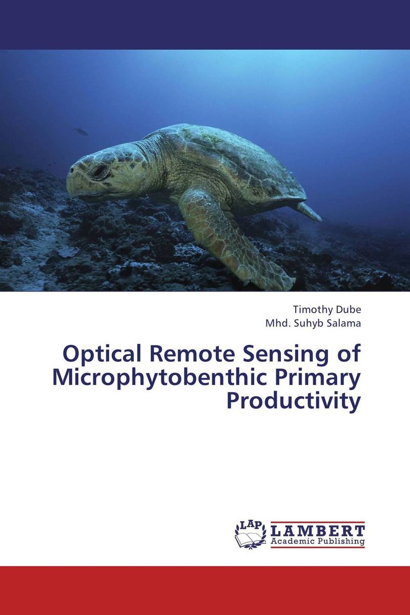 Optical Remote Sensing of Microphytobenthic Primary Productivity remote sensing inversion problems and natural hazards asradvances in space research volume 21 3