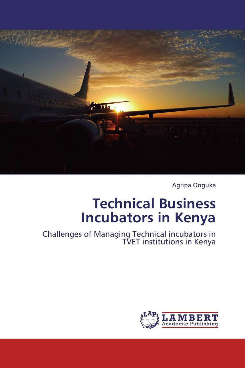 Technical Business Incubators in Kenya what are behind the science parks and business incubators in china