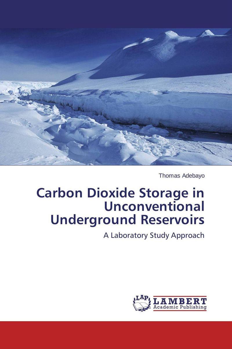 Carbon Dioxide Storage in Unconventional Underground Reservoirs