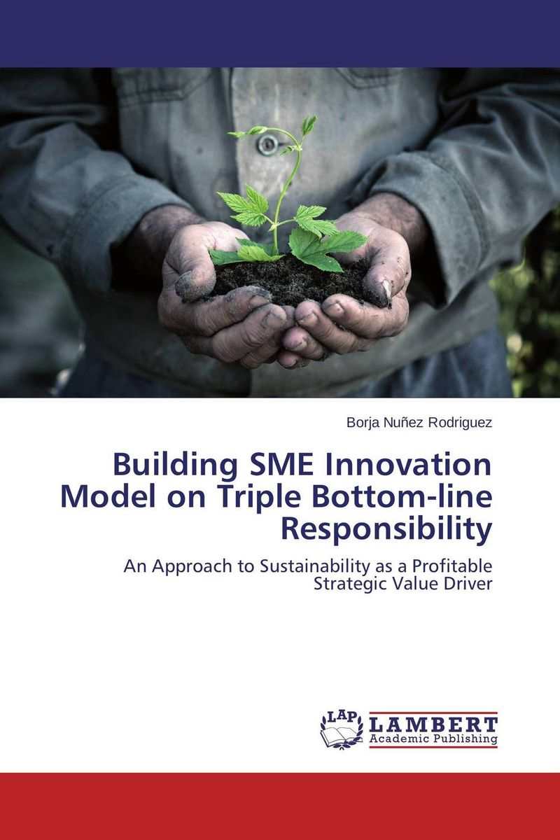 Building SME Innovation Model on Triple Bottom-line Responsibility duncan bruce the dream cafe lessons in the art of radical innovation