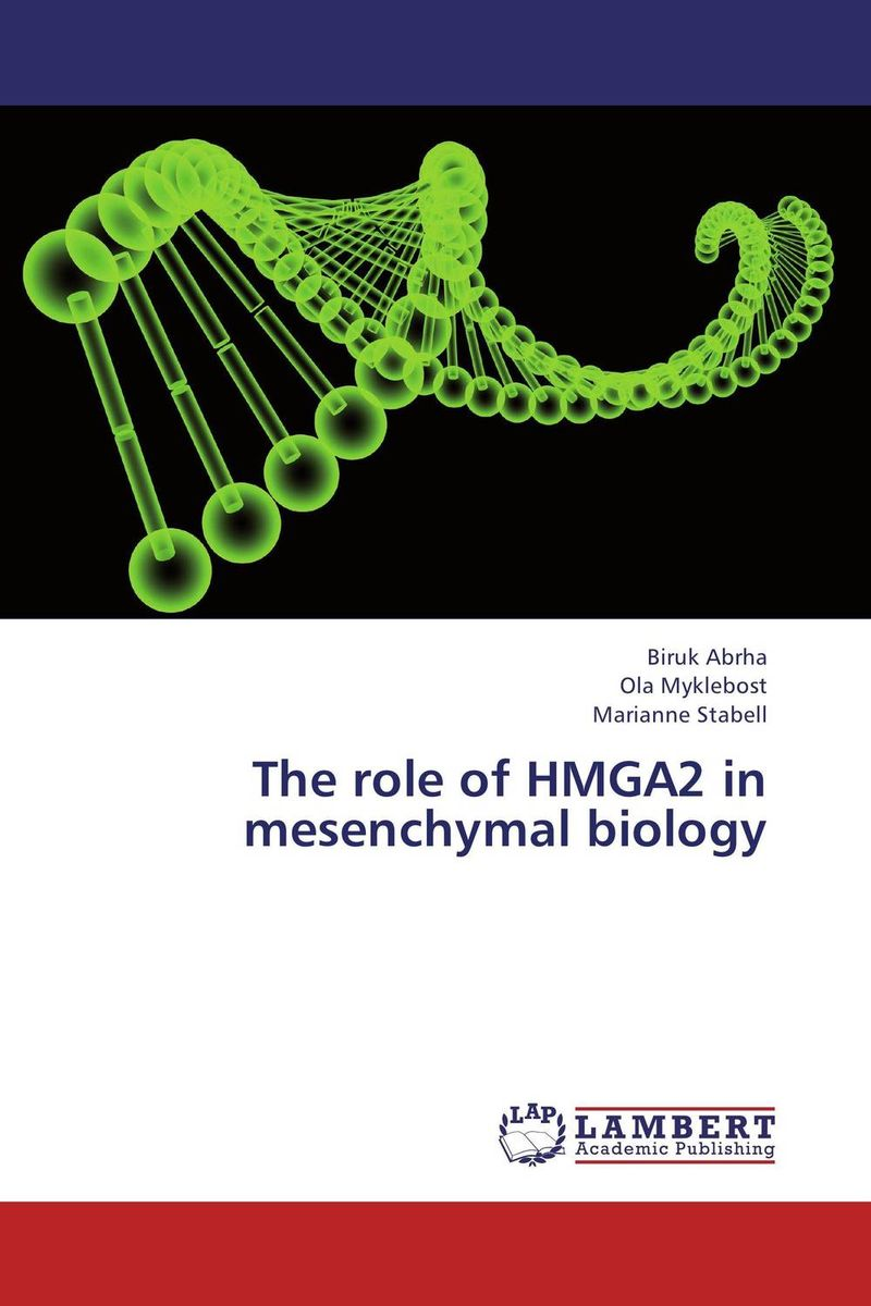 The role of HMGA2 in mesenchymal biology the role of dna damage and repair in cell aging 4