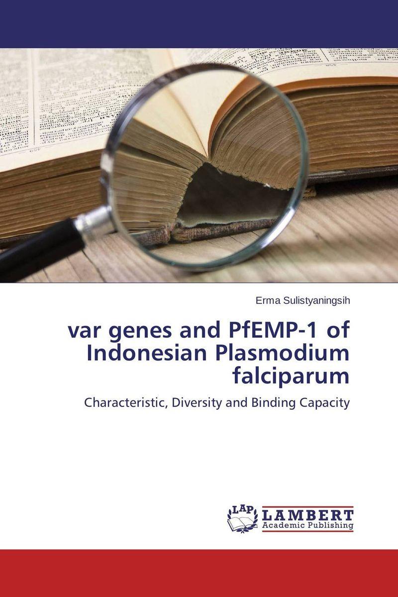 var genes and PfEMP-1 of Indonesian Plasmodium falciparum phal cornu cervi var red