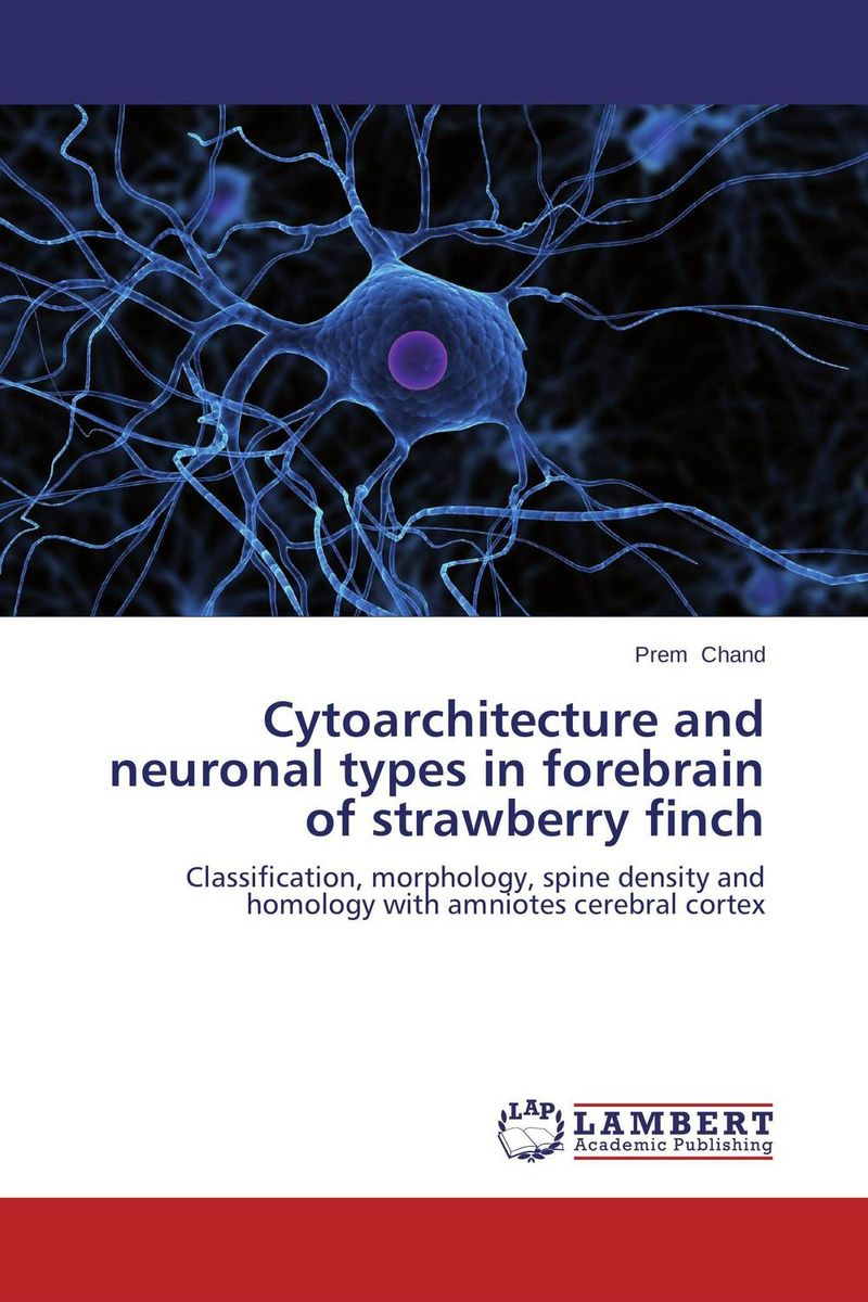 Cytoarchitecture and neuronal types in forebrain of strawberry finch work types