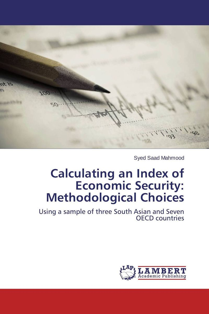 Calculating an Index of Economic Security: Methodological Choices economic methodology