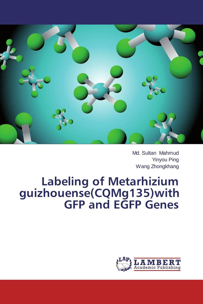Labeling of Metarhizium guizhouense(CQMg135)with GFP and EGFP Genes persistence and effectiveness of the entomopathogenic nematodes