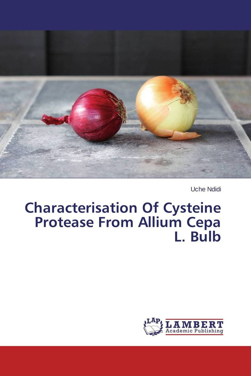 Characterisation Of Cysteine Protease From Allium Cepa L. Bulb using enzyme from novozyme