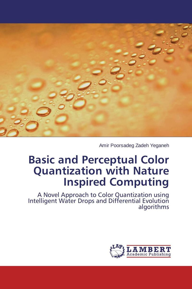 Basic and Perceptual Color Quantization with Nature Inspired Computing practical global optimization computing methods in molecular modelling