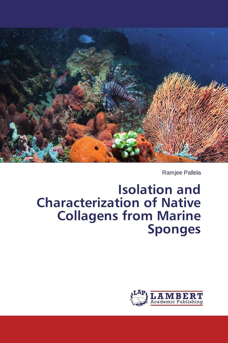 Isolation and Characterization of Native Collagens from Marine Sponges