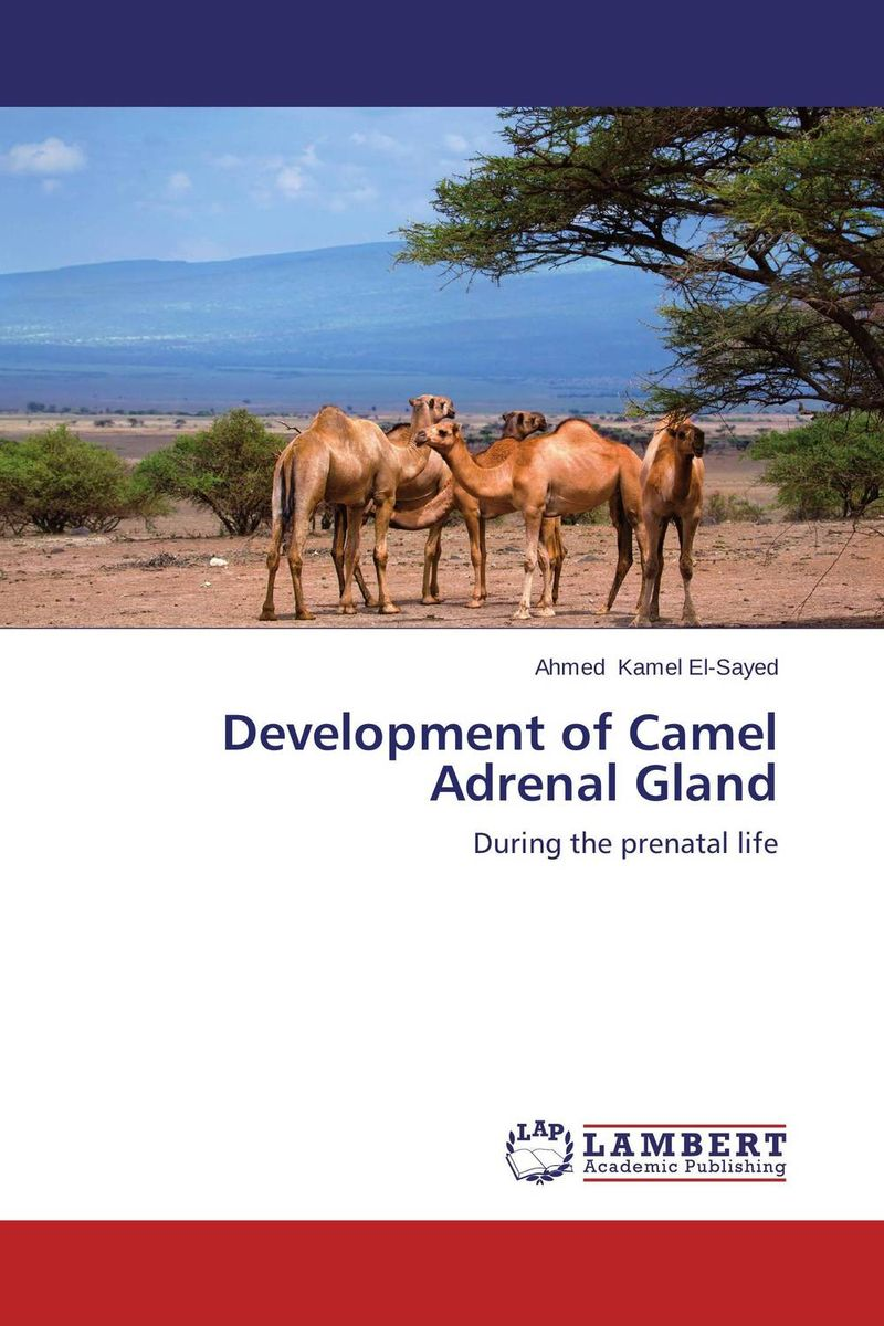 Development of Camel Adrenal Gland benign enlargement of prostate gland bep in ayurveda