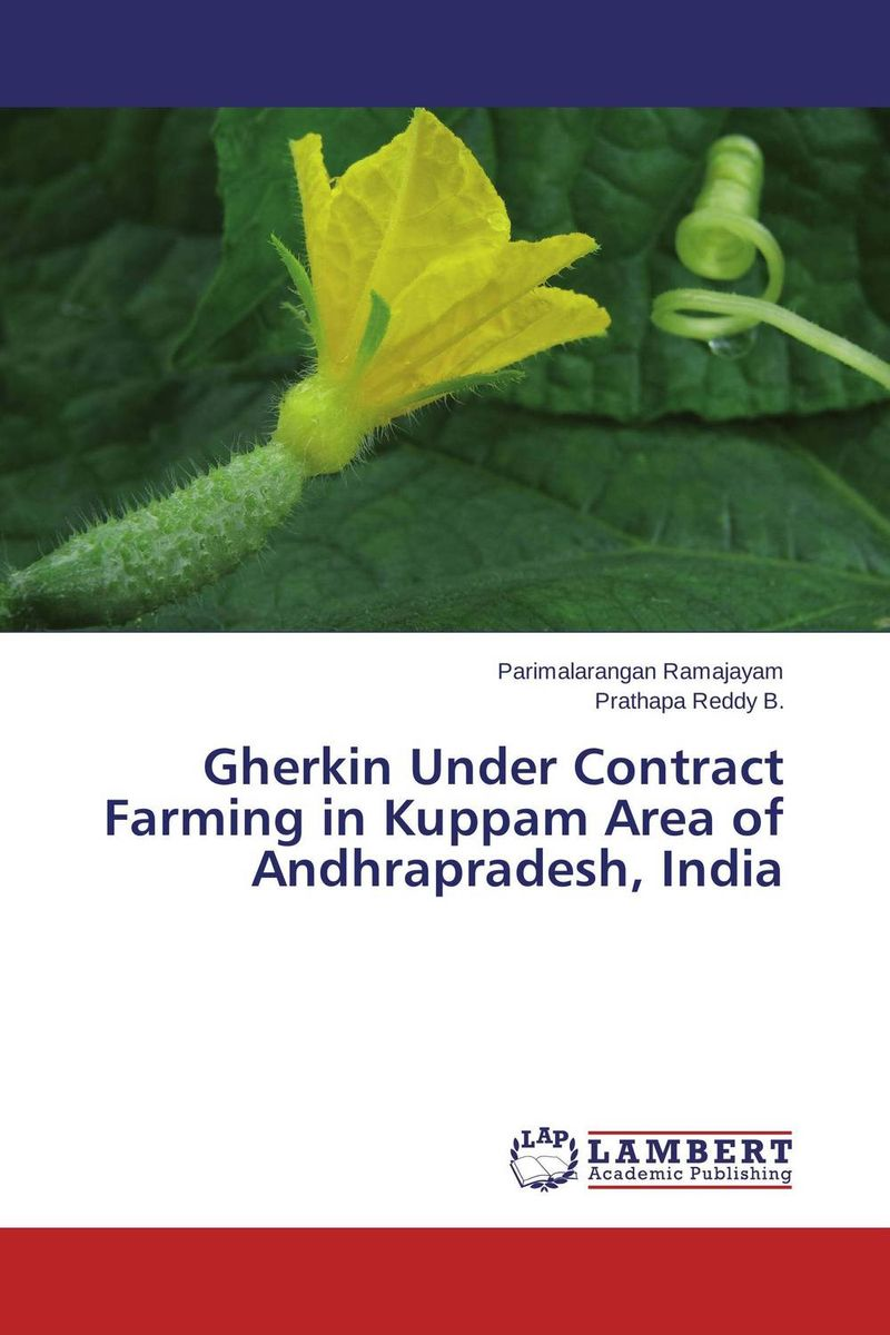 Gherkin Under Contract Farming in Kuppam Area of Andhrapradesh, India