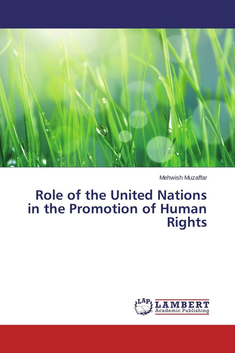 Role of the United Nations in the Promotion of Human Rights the heart of human rights