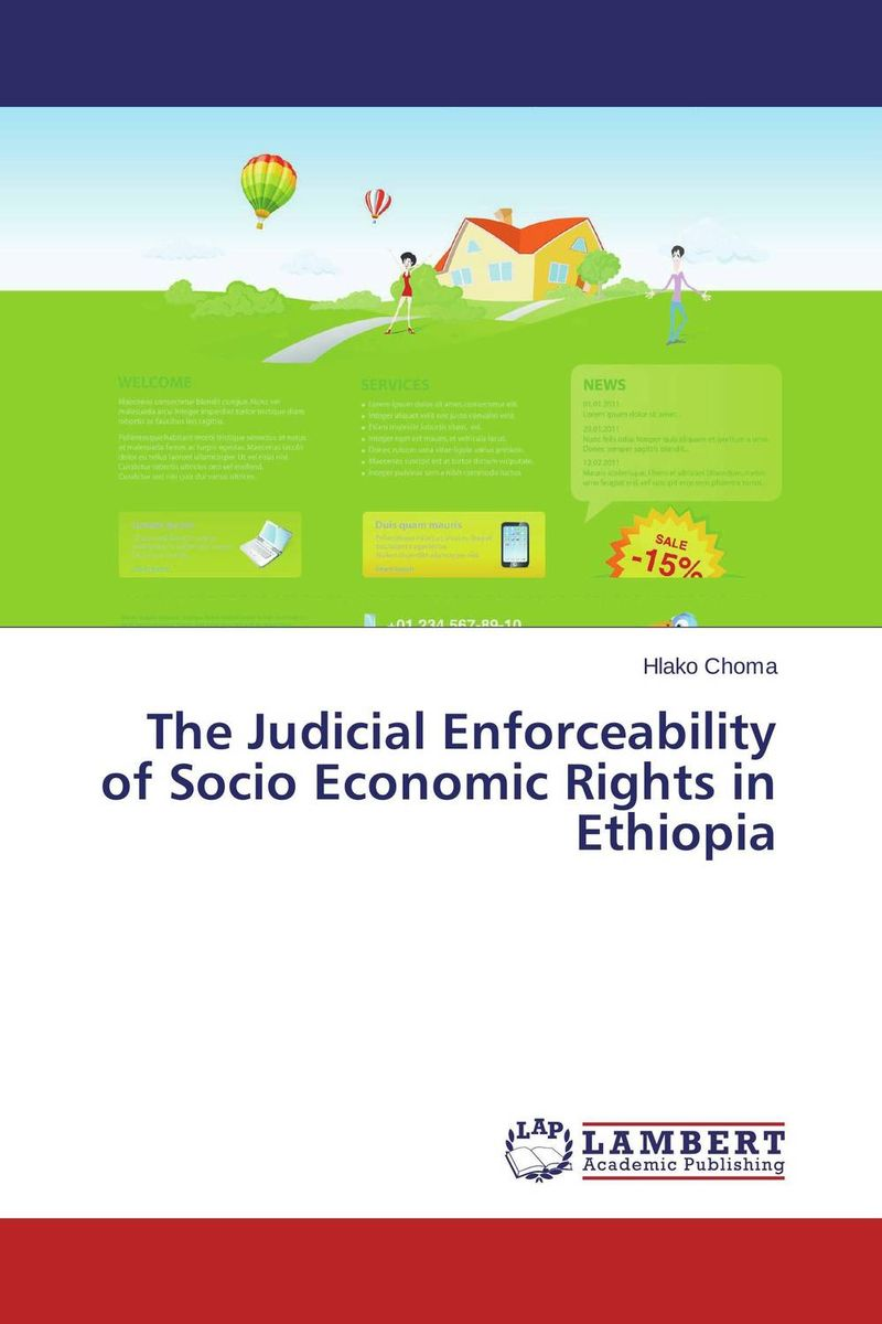 The Judicial Enforceability of Socio Economic Rights in Ethiopia economic methodology