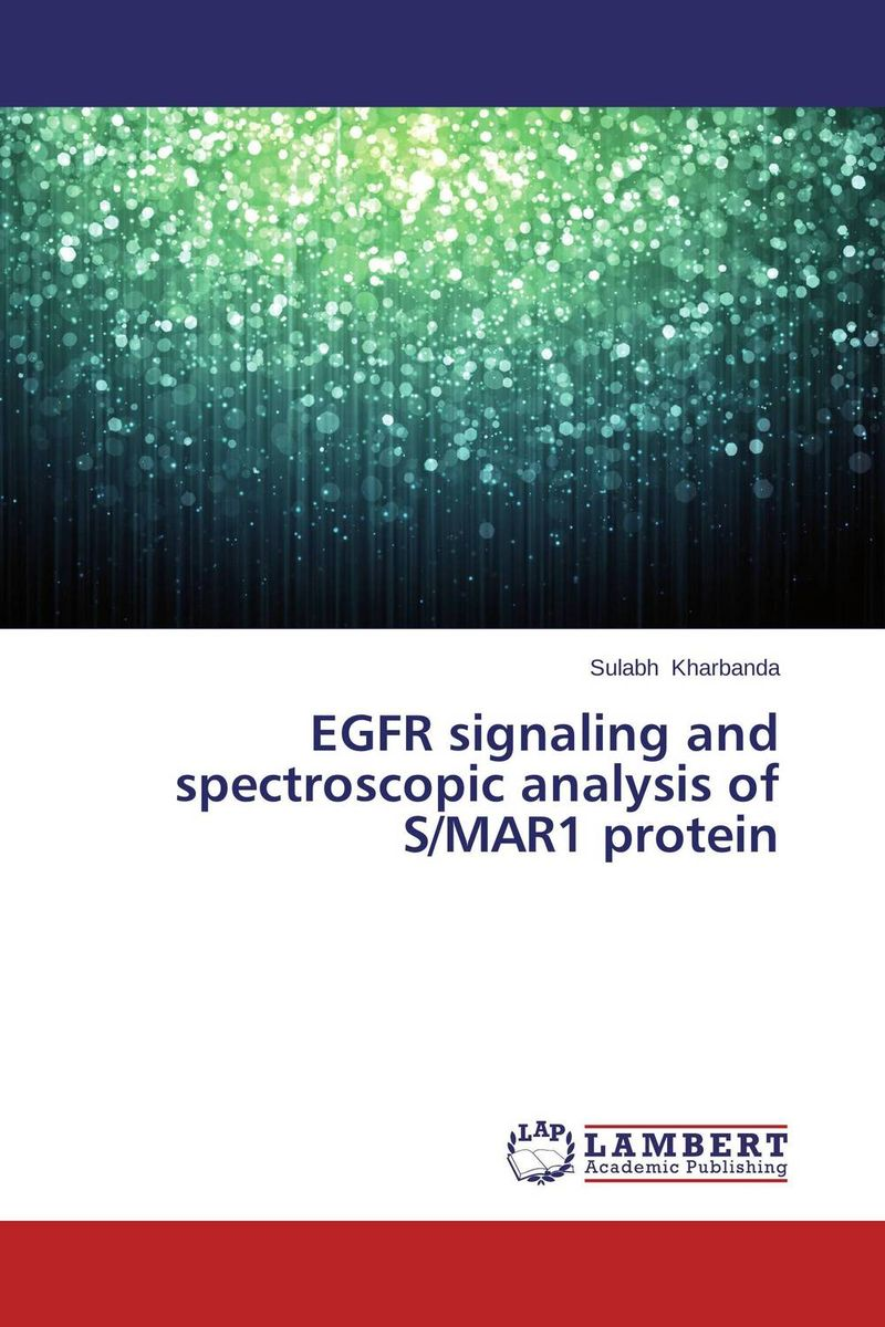 Фото EGFR signaling and spectroscopic analysis of S/MAR1 protein cervical cancer in amhara region in ethiopia