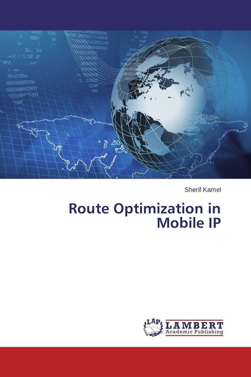 Route Optimization  in Mobile IP practical global optimization computing methods in molecular modelling