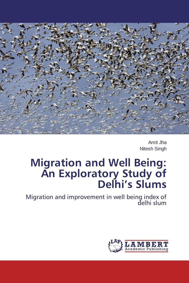 Migration and Well Being: An Exploratory Study of Delhi's Slums migration and well being an exploratory study of delhi's slums