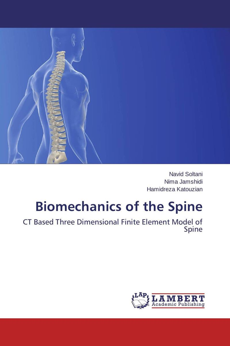 Biomechanics of the Spine human pelvic girdle lumbar spine model human pelvis model section five lumbar spine model