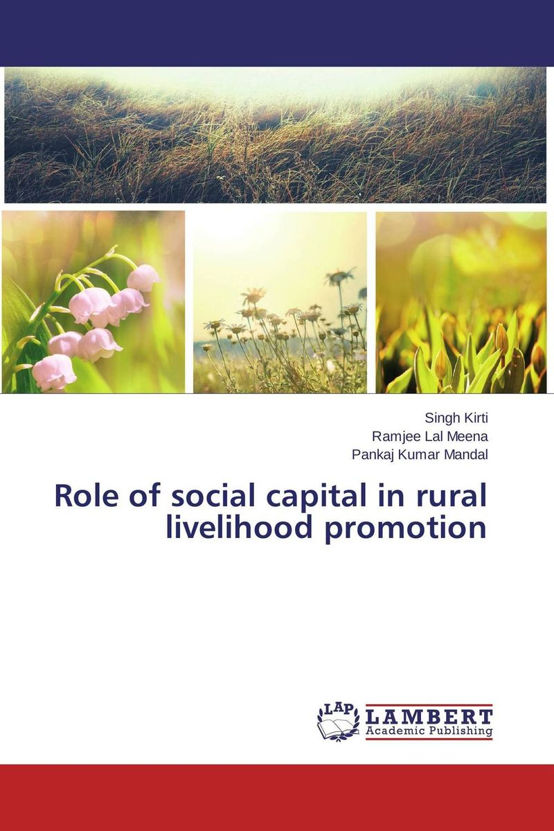 купить Role of social capital in rural livelihood promotion недорого
