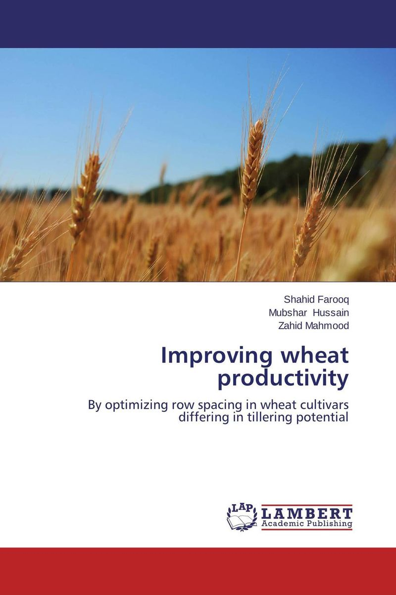 Improving wheat productivity