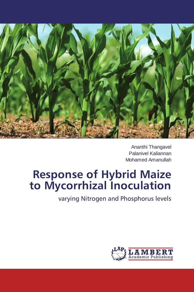 Response of Hybrid Maize to Mycorrhizal Inoculation