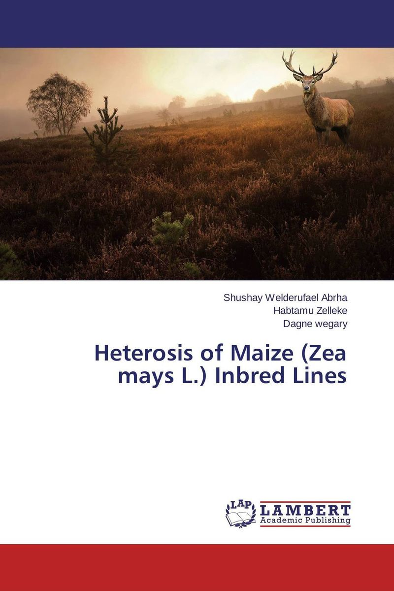Heterosis of Maize (Zea mays L.) Inbred Lines heterosis and combining ability in maize zea mays l a research