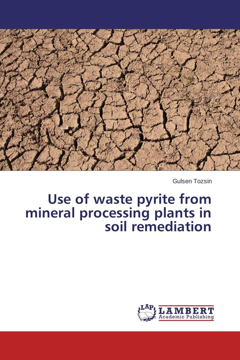Use of waste pyrite from mineral processing plants in soil remediation