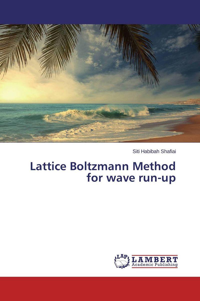 Lattice Boltzmann Method for wave run-up