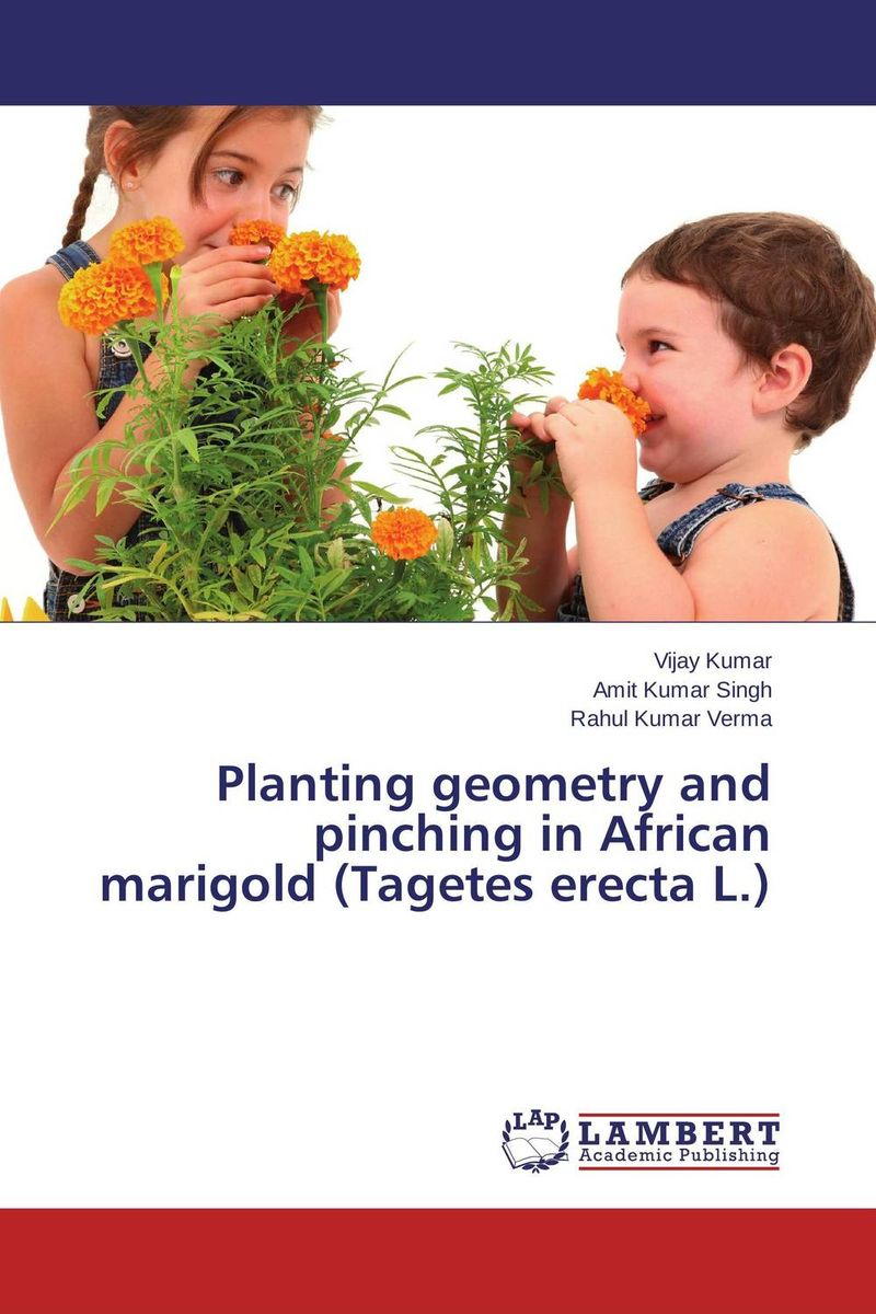 Planting geometry and pinching in African marigold (Tagetes erecta L.) the best exotic marigold hotel