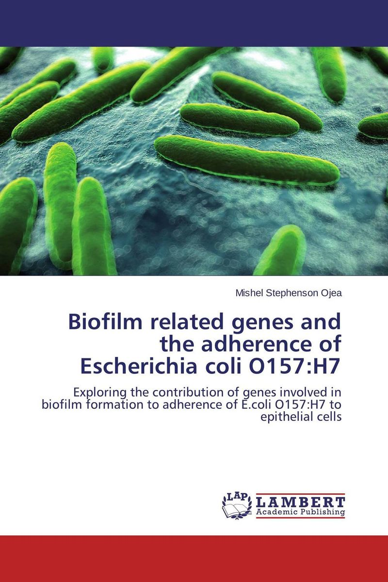 Biofilm related genes and the adherence of Escherichia coli O157:H7 deepak sharma and s s soni escherichia coli strains associated with calf diarrhoea