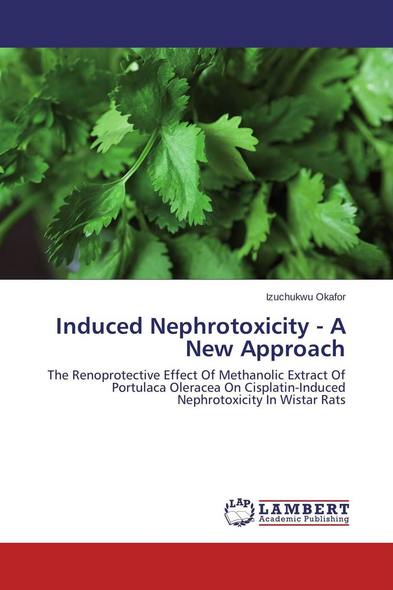 Induced Nephrotoxicity - A New Approach 1 box blood uric acid balance tea lower uric acid treatment gout remedios natural acido urico