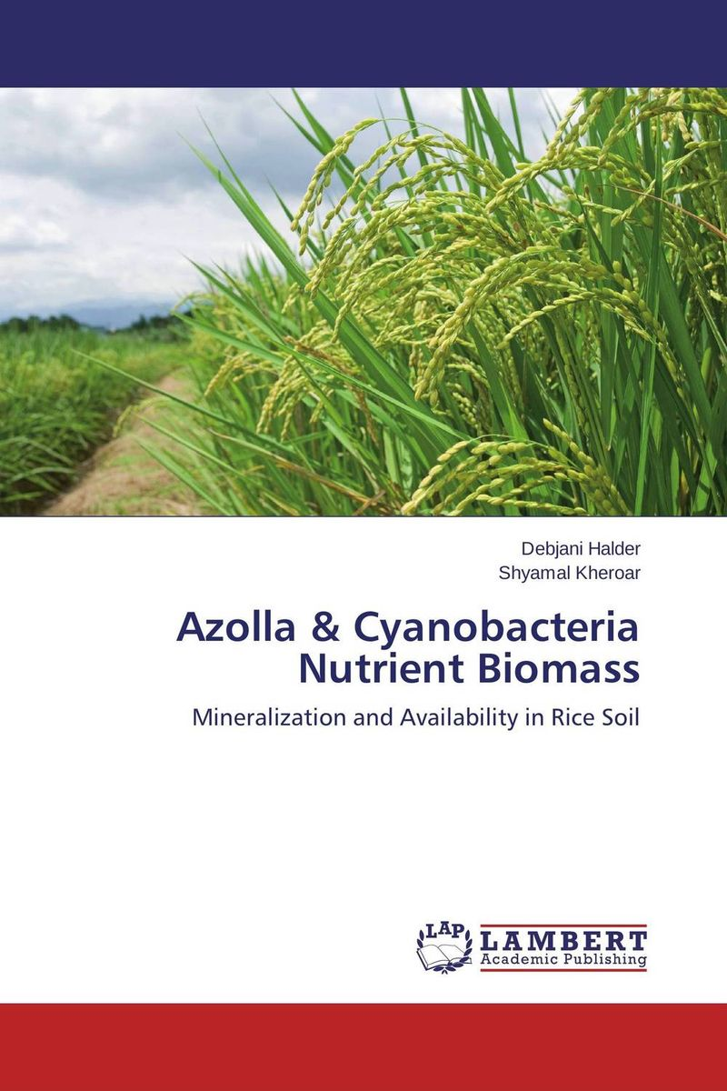 Azolla & Cyanobacteria Nutrient Biomass water table control for rice production in ghana