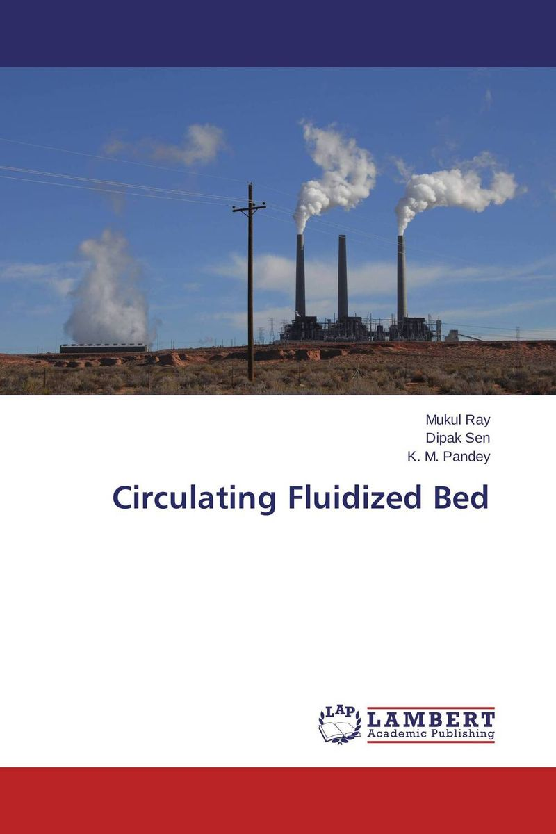 Circulating Fluidized Bed compartmented fluidized bed gasifier
