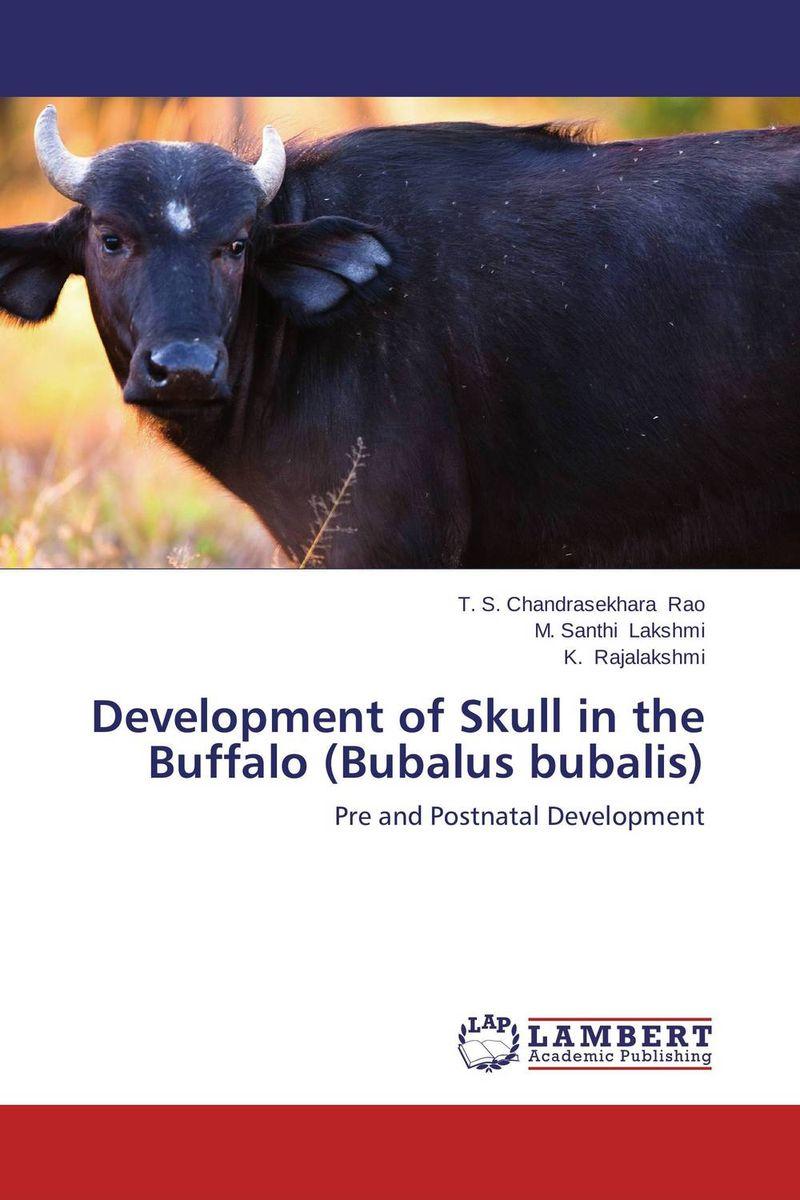 Development of Skull in the Buffalo (Bubalus bubalis) купить the johnny the skull