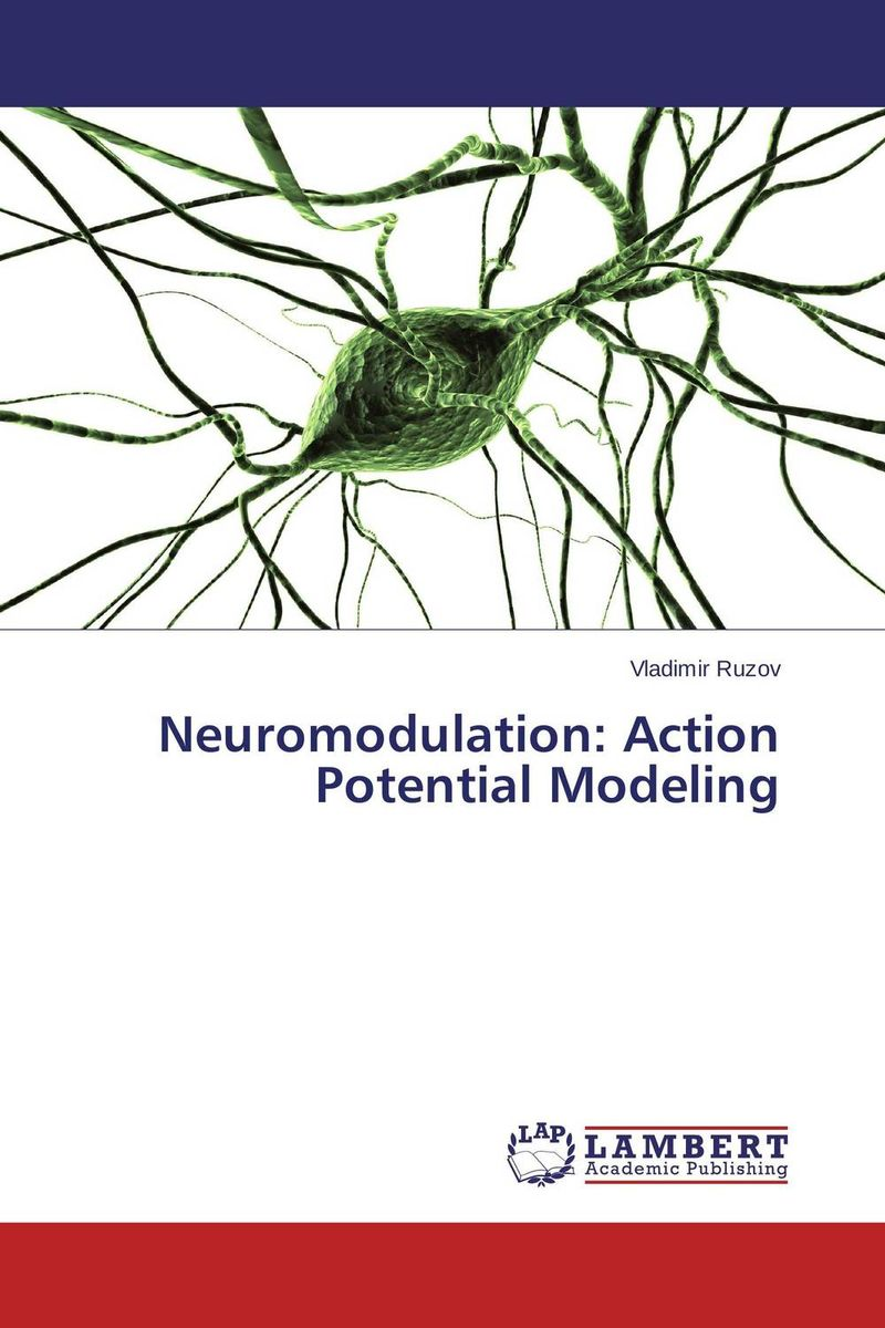Neuromodulation: Action Potential Modeling