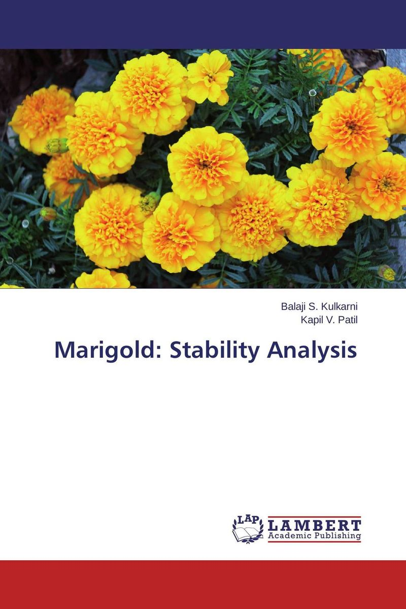 Marigold: Stability Analysis the best exotic marigold hotel