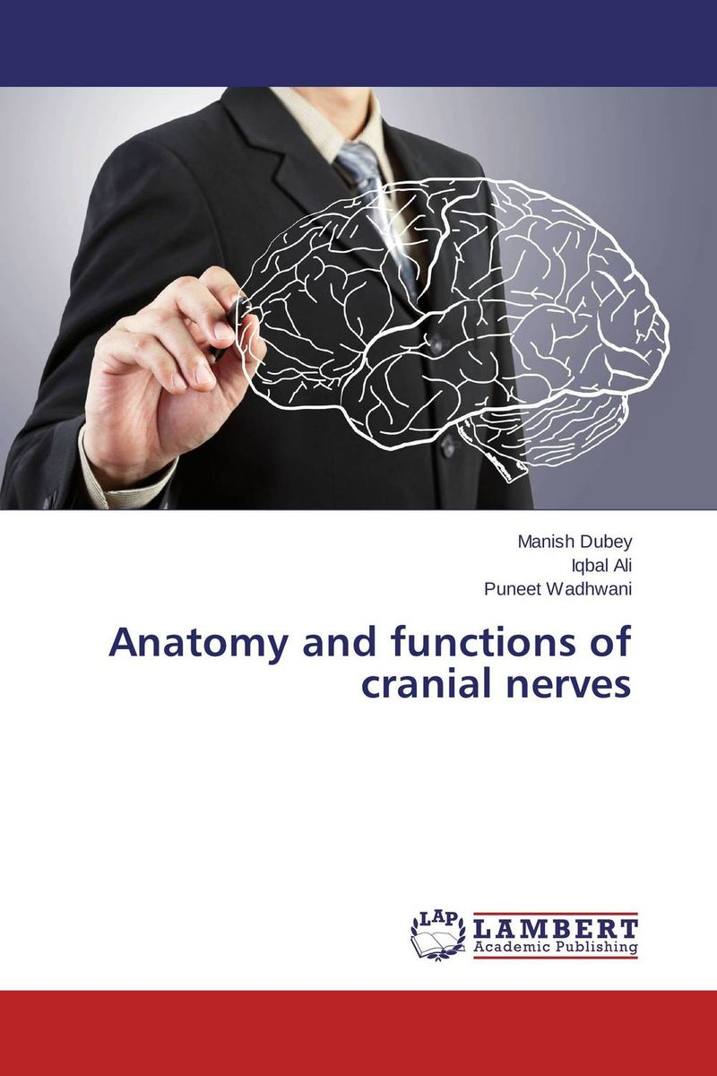 Anatomy and functions of cranial nerves anatomy of a disappearance