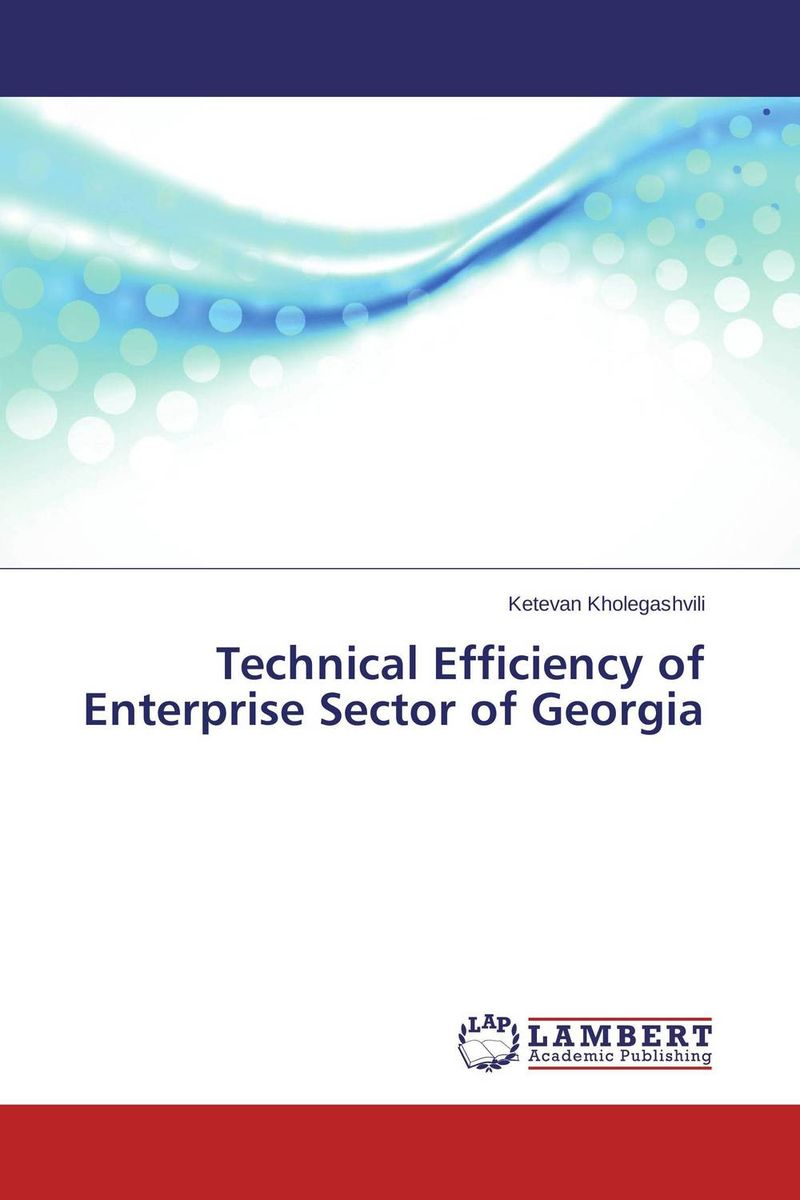 Technical Efficiency of Enterprise Sector of Georgia
