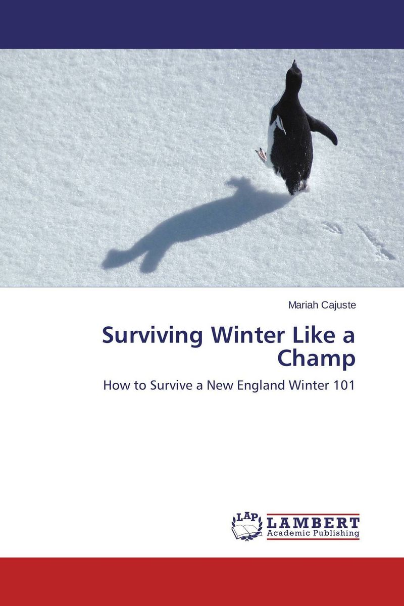 Surviving Winter Like a Champ new england textiles in the nineteenth century – profits