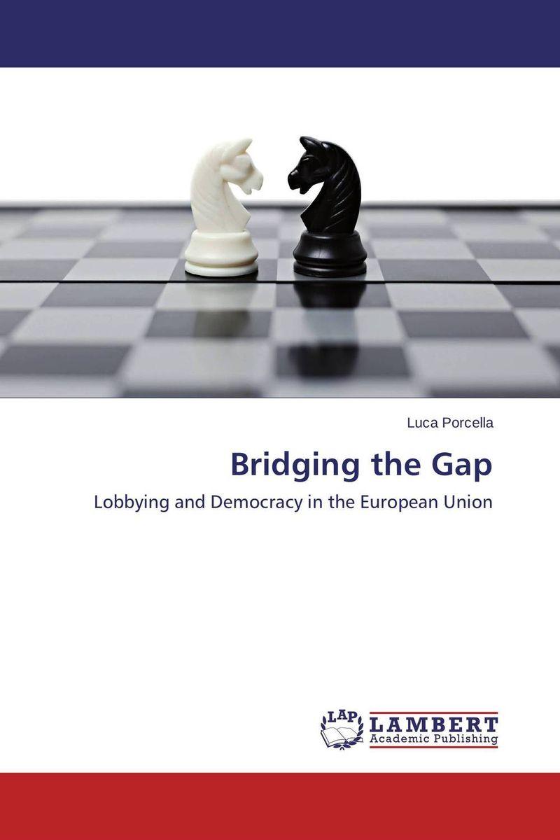 Bridging the Gap democracy in america nce