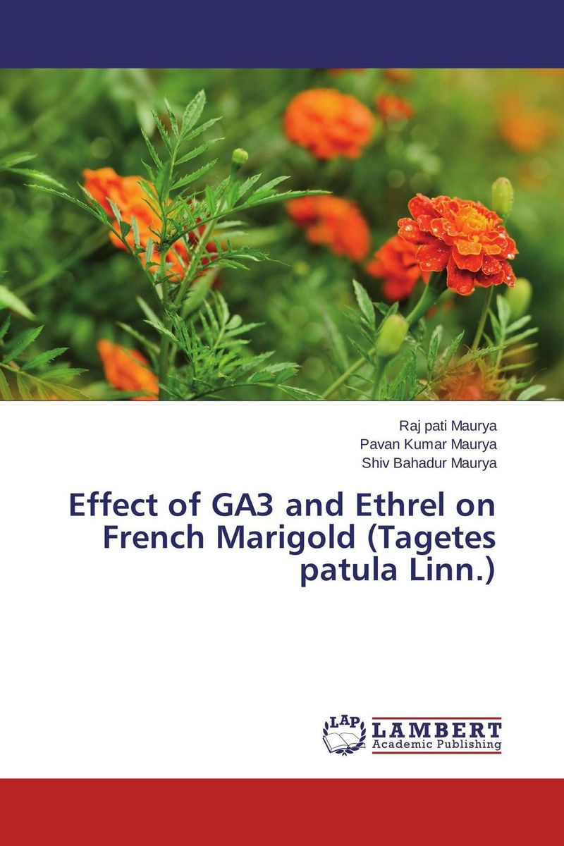 Effect of GA3 and Ethrel on French Marigold (Tagetes patula Linn.) шарм мурано из серебра 77621006000
