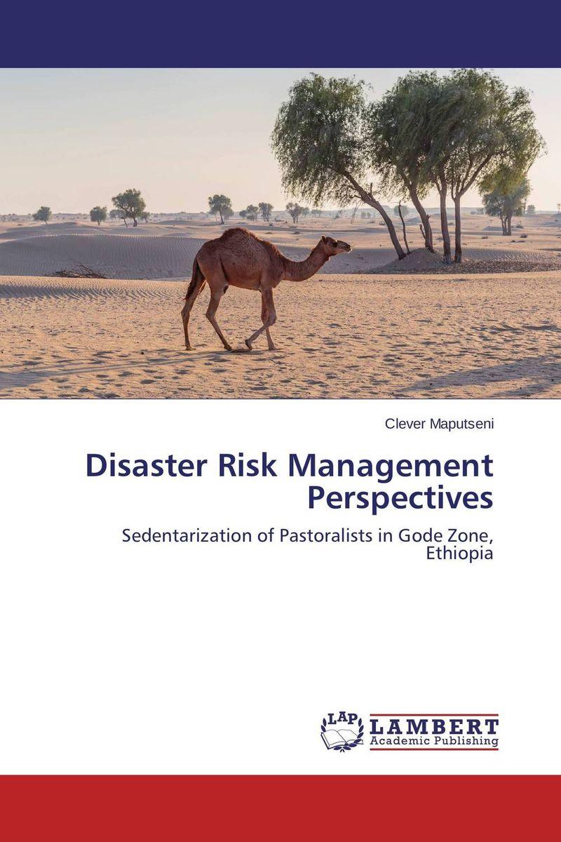 Disaster Risk Management Perspectives a royal disaster