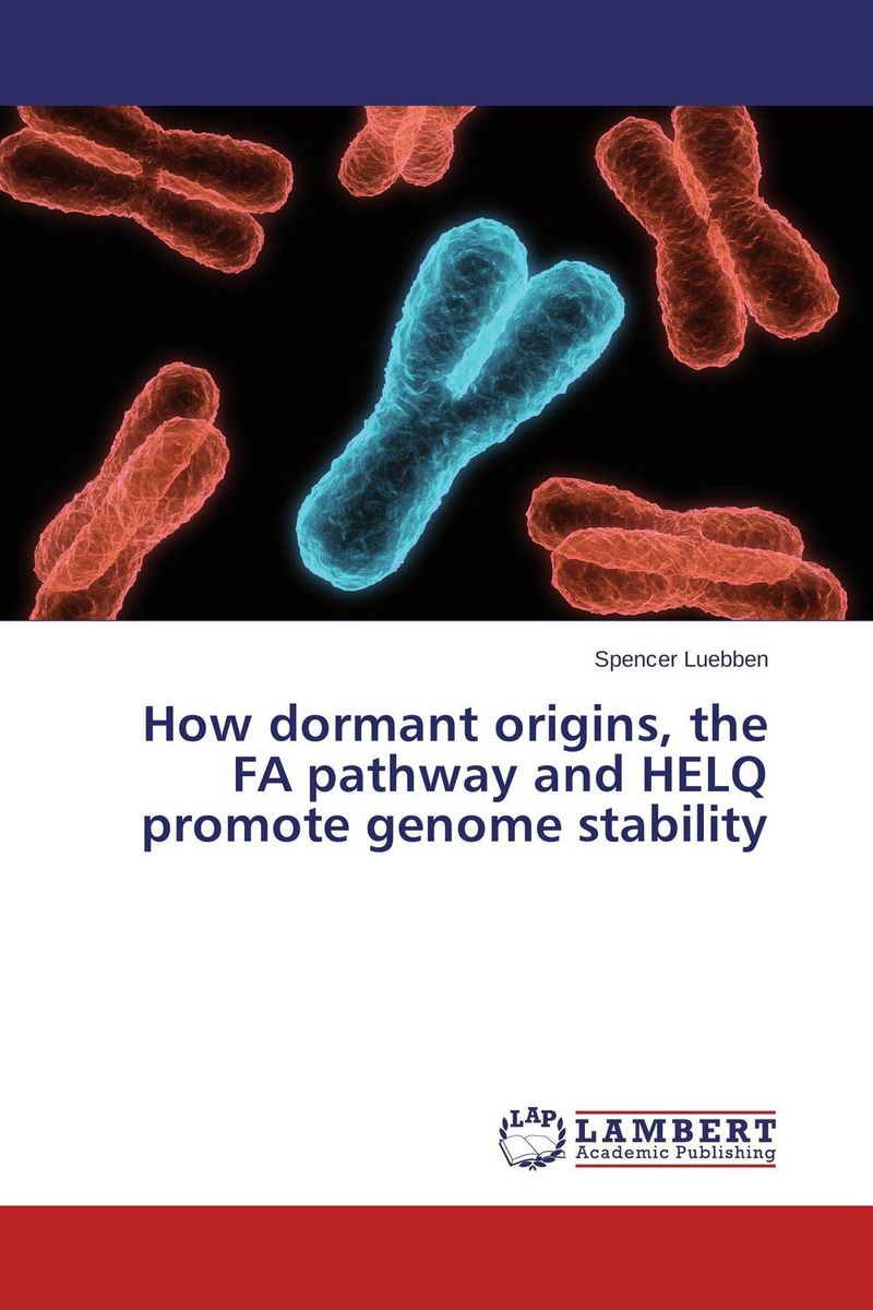 How dormant origins, the FA pathway and HELQ promote genome stability rakesh kumar tiwari and rajendra prasad ojha conformation and stability of mixed dna triplex