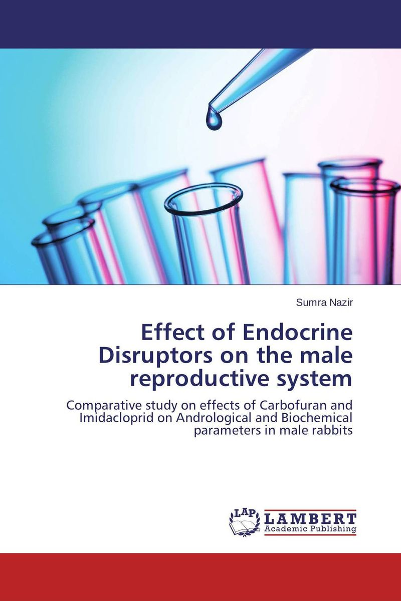 Effect of Endocrine Disruptors on the male reproductive system male female reproductive system model anatomy of the male female reproductive system human reproductive system gasen rzmn028