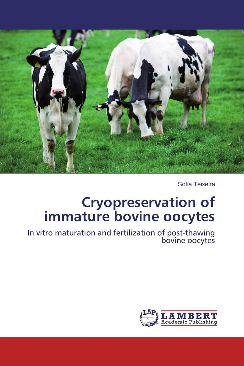 Cryopreservation of immature bovine oocytes bovine metacestodes