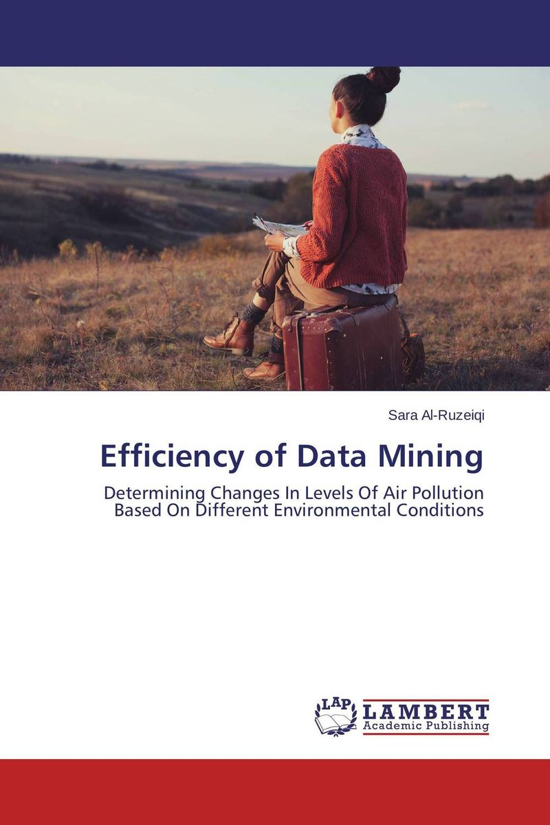 Efficiency of Data Mining the role of evaluation as a mechanism for advancing principal practice