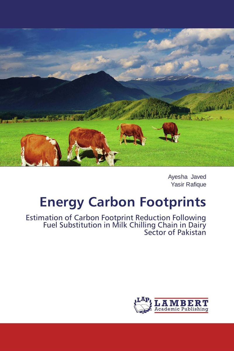 Energy Carbon Footprints купить