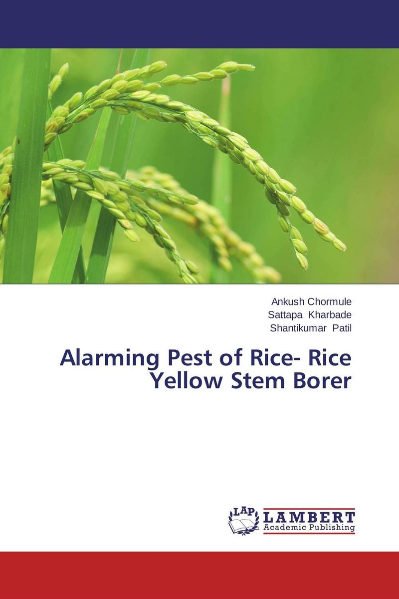 Alarming Pest of Rice- Rice Yellow Stem Borer natural enemy fauna in rice wheat system of india