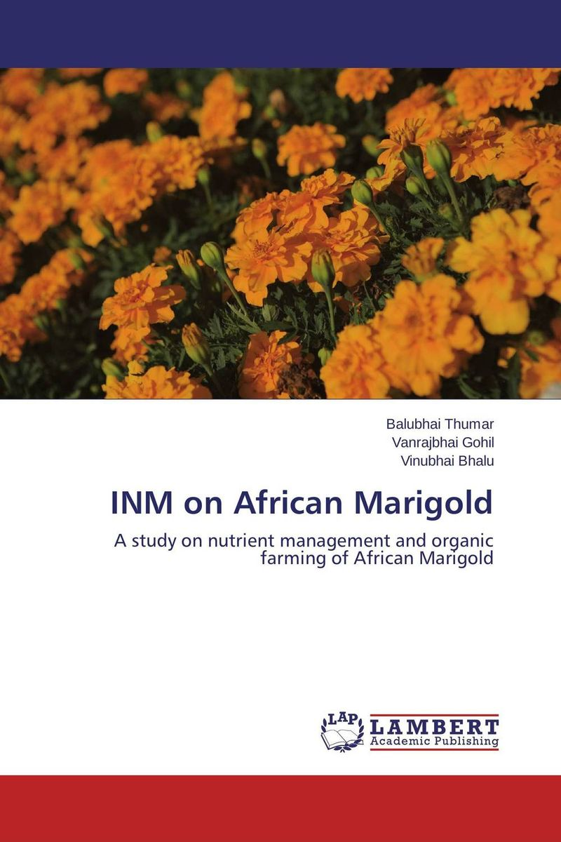 INM on African Marigold the best exotic marigold hotel