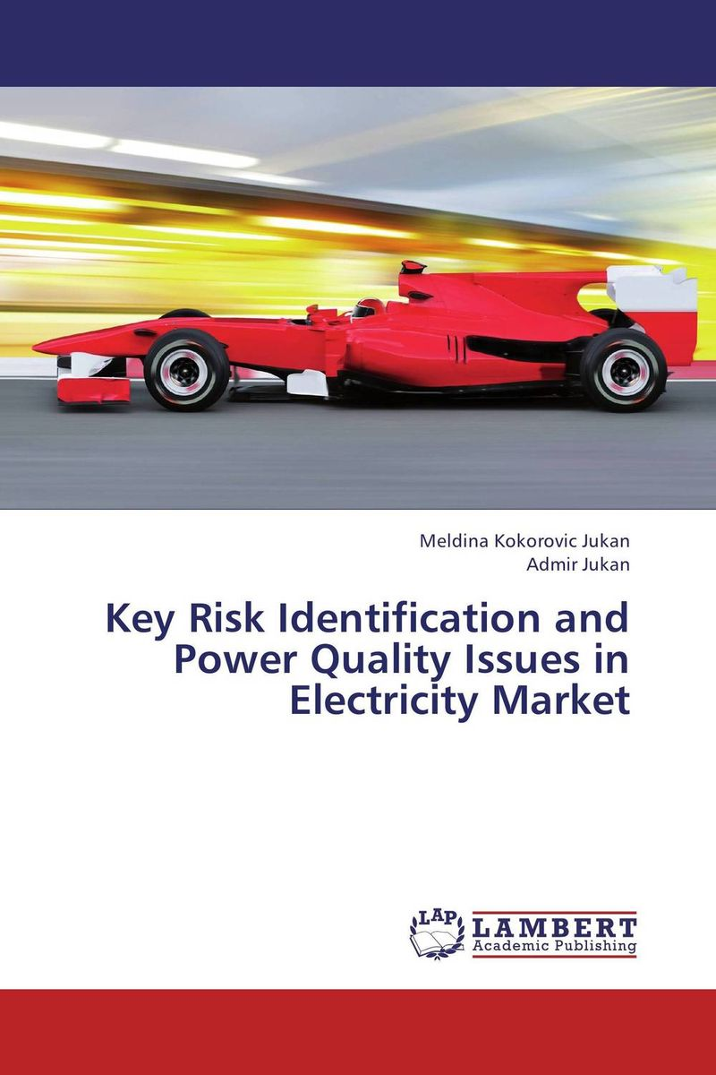 Key Risk Identification and Power Quality Issues in Electricity Market christian szylar handbook of market risk
