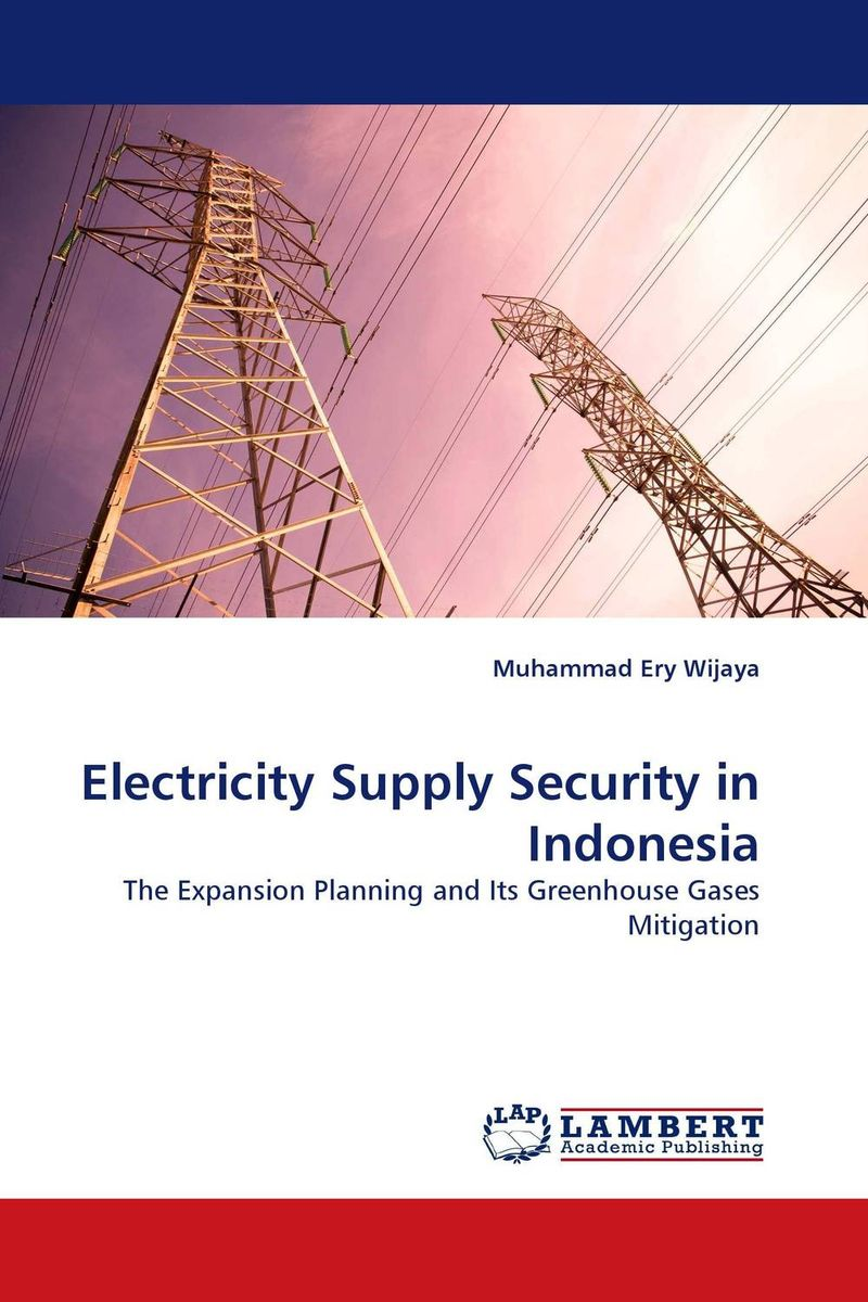 Electricity Supply Security in Indonesia alex raynham future energy