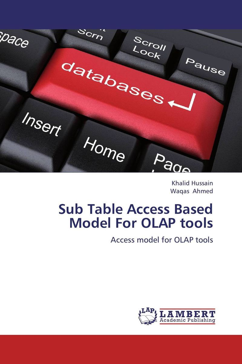 Sub Table Access Based Model For OLAP tools robert hillard information driven business how to manage data and information for maximum advantage